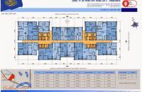 Chính chủ cần bán gấp căn hộ tại tòa C, Kim Văn Kim Lũ, ra tết nhận nhà, dt: 96m2, giá tốt