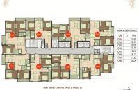 Chính chủ bán căn 2506 dt 100.82m2, CC 89 Phùng Hưng cần bán gấp giá 16tr/m2. LH 0944952552