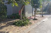 Bán đất tái định cư Trâu Qùy, DT 40 m2, MT 3 m, hướng TN, giá 29.5 triệu/m2. LH: 0981.221.626.