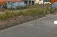 Bán đất TĐC Trâu Quỳ 35,5m, mặt tiền 4m giá 31,5tr/m LH 0981221633.