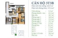 Bán căn hộ đẹp nhất dự án DT 156m2, 3PN, 2VS, căn góc giá siêu hấp dẫn LH 0989825369