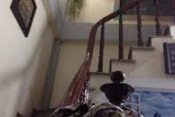 Bán Nhà Xã Đàn, 4 tầng MT  3.7m, Giá 2.2tỷ.