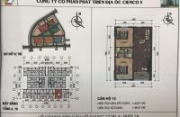 Bán căn hộ giá gốc rẻ, tại khu đô thị Thanh Hà Cienco 5
