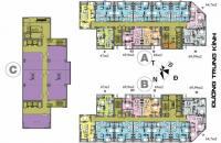 Chính chủ cần bán CH chung cư 219 Trung Kính tầng 1505, DT 68m2, 30 tr/m2, LH 0981129026