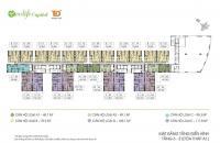 Giá 26.7 tr/m2  chủ nhà 0989218798  cần  bán gấp  căn hộ 111.8m2 /3PN/2WC  EcoLife Capitol