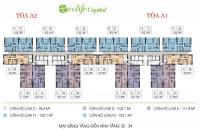 0989218798 bán gấp căn 01 tòa A2, DT: 103.1m2, 3PN, Ecolife Capitol, giá 27 tr/m2