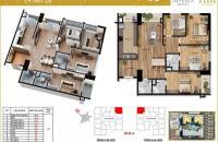 Bán gấp căn 05 tòa A chung cư Imperia Garden, 120m2, 4PN+3WC, giá cắt lỗ