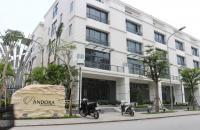 Mua nhanh căn góc cực đẹp nhà vườn Pandora Thanh Xuân & nhận Mercedes