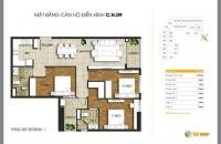 Chính chủ cần bán căn góc CN09 = 106.98m2, 3PN, chung cư T&T Riverview - 440 Vĩnh Hưng, 21 tr/m2