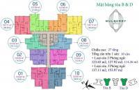 Cơ hội vàng để sở hữu 30 suất ngoại giao tại chung cư cao cấp Mulberry Lane – nhận nhà ở ngay, giá chưa đến 3 tỷ, ls 0%, ân hạn nợ gốc 2 năm.