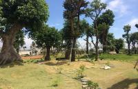 Biệt Thự Phú Cát City - Khu đô thị thông minh đầu tư sinh lời lớn  chỉ 10tr/m