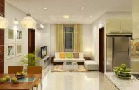 Bán cắt lỗ CC Eco Green City tầng 1615: 95,1m2 và 1803: 55,53m2 CT3, giá: 24 tr/m2, 0982525423