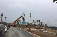 Dự án  Biệt thự Phú cát City đang trong quá trình đẩy mạnh hoàn thiện mặt bằng giá cực hot 9.3 tr/m