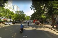 MP Trần Hưng Đạo, 350m2, MT 12m, 250 tỷ, kinh doanh, hotel, bulding, siêu thị.