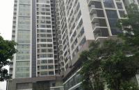 Chính chủ cần bán căn hộ siêu đẹp tại chung cư cao cấp Thăng Long Number One (Viglacera)
