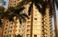 Cần bán căn hộ chung cư chính chủ 1702 - N01 Tây Nam Đại Học Thương Mại, ở luôn