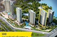 Gia đình cần tiền bán gấp căn C1 1106 dự án Vinhomes D'Capitale Trần Duy Hưng