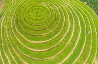 Bán biệt thự khu sinh thái đan phượng hỗ trợ vay lãi suất 0% - tiền mặt chỉ cần 1,5 tỷ
