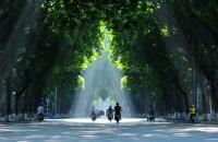 Mặt phố Trần Phú, Ba Đình, nhà to, vỉa hè rộng, 16 tỷ, 60m2, mặt tiền rộng 6m