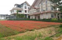 Chính Chủ bán lô 400 Đất biệt thự Sinh Thái Đan Phượng- The Phoenix Garden-Thị Trấn Phùng-Hà Nội.