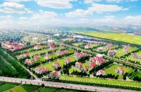 Chính chủ cần bán gấp dãy C6A căn số 4 – 5 khu đô thị The phoenix garden