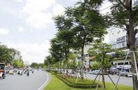 Bán gấp nhà mặt phố Ô Chợ Dừa 210m2 chỉ 45 tỷ, kinh doanh cực đỉnh
