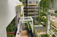 Tôi cần bán gấp căn hộ chung cư Seasons Avenue, khu đô thị Mỗ Lao, Hà Đông.