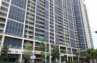 Bán căn hộ chung cư cao cấp tòa T1 Euroland Làng Việt Kiều Châu Âu, căn hộ full nội thất