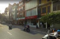 Mặt phố Nguyễn Du 135m2, mt 4.8m, 65 tỷ, kinh doanh nhà hàng, hiệu vàng, kim cương, đá quý