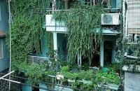 Bán nhà Lạc Trung, quận Hai Bà Trưng. Ô tô 7 chỗ vào nhà. 88m2 4 tầng giá 10.2 tỷ 0983643285
