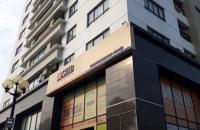 Bán gấp căn hộ tầng 16 dự án 187 Tây Sơn, giá 31 triệu/m2, sổ hồng vĩnh viễn 0914739966