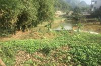 Bán đất diện tích 635.5 m2 Làng Om, Xã Cao Dương, huyện Lương Sơn, Hòa Bình