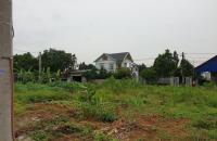 Chính chủ bán đất đấu giá thôn Thắng Trí Sóc Sơn Hà nội diện tích 100m2 giá rẻ 320tr - 0904.596.219