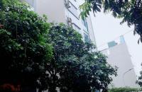 Bán Gấp Nhà Trần Phú Hà Đông,Vỉa hè, 3 Ô tô Tránh, Gần Hồ, Công Viên, KD Sầm Uất.Trên 3Tỷ.