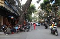 Mặt phố, Nguyễn Hữu Huân, 68m2, mặt tiền 6.5m, Chỉ 35.8 tỷ,LH 0961505669