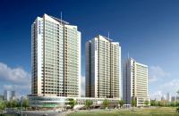 Bán căn hộ chung cư cao cấp Kosmo Tây Hồ 125m2/3PN/3,8 tỷ CK 2% HTLS 0% 12 tháng