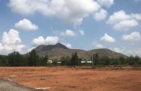 Cô Năm kẹt tiền bán gấp 1000m2 đất vườn trồng cây lâu năm gần Sân Bay Phan Thiết – chính chủ ...