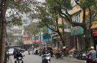 Bán đất tặng nhà mặt phố Đoàn Thị Điểm, kinh doanh khủng, 153m2, mt 7m.