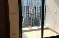 Cho thuê căn hộ 2PN chung cư Amber Riverside Minh Khai mới tinh thông với Times City
