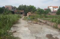 Chính chủ cần bán 66 m2 đất Tái Định Cư Chi Đông, Lệ Chi, Gia Lâm