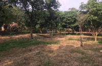 Cần bán 1840m2 đất địa thế siêu đẹp, có nhà, giá siêu rẻ tại phường Kim Sơn, thị xã Sơn Tây, Hà Nội