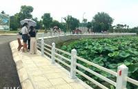 ĐẤT NỀN HÒA LẠC KHU CNC 626TR SỔ ĐỎ TRAO TAY - ĐHQG - ĐẠI LỘ THĂNG LONG - CÁCH XANH VILLAS 100M ...