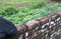 Bán lô đất mặt đường 32 Đan Phượng Hà Nội.
