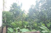 Siêu hiếm, bán gấp lô đất 48m2 Yên Nghĩa, Hà Đông, đầu tư siêu đỉnh, giá 750 triệu.