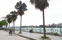 Mặt phố Từ Hoa 175m2, MT9m, view hồ 83 tỷ, kinh doanh spa, khách sạn Tây Hồ