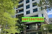 Bán Nhà 120m2 Mặt Phố Trần Vỹ, Bán Nhà Cầu Giấy,Ôtô, Hiếm, Đẹp, KD Siêu Vip 55tỷ thương lượng