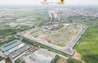 Mở bán dự án liền kề Cổ Dương - Đông Anh - Hà Nội