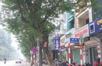 Bán nhà phân lô Hoàng Quốc Việt – Cầu Giấy, kinh doanh, ô chờ thang máy . 67m2 * 5 tầng * MT 4m.