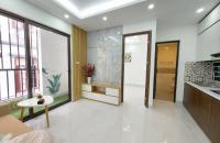 Chủ đầu tư bán chung cư mini Lò Đúc –Trần Khát Chân hơn 700 triệu/căn ( 31 -52m2) Ở Ngay