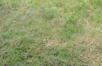 Gia đình tôi , cần Gấp bán mảnh đất  S 58.m2.tại Vân Canh gần khu 6,9 ha, giáp với khu đô thị Vân Canh HUD lh 0961445118
